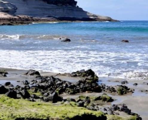 Rent A Car Playa De Las Americas